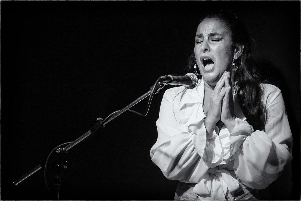 Flamenco: Baile, Cante, Palmas